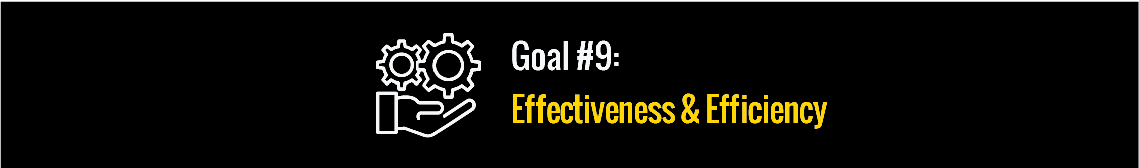 Goal #9: Effectiveness & Efficiency